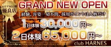 club HARNES(ハーネス)【公式求人・体入情報】(藤沢キャバクラ)の求人・バイト・体験入店情報