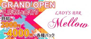 LADY'S BAR Mellow(メロウ)【公式求人情報】(中洲スナック)の求人・バイト・体験入店情報