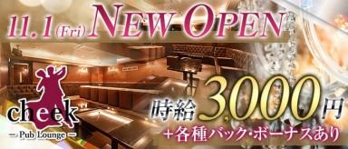 Pub Lounge cheek(チーク)【公式求人情報】(流川ラウンジ)の求人・バイト・体験入店情報