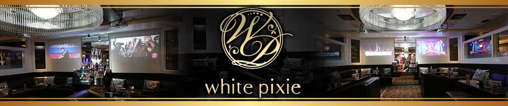 white pixie(ホワイトピクシー) 仙台キャバクラ TOP画像