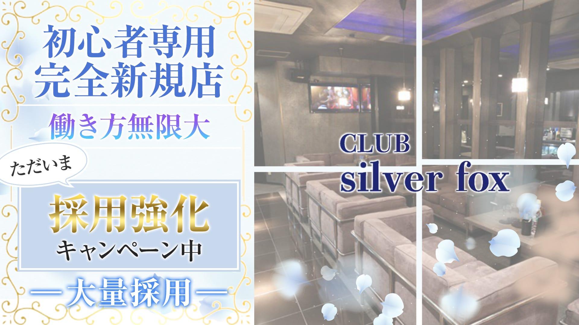 CLUB Silver fox(シルバーフォックス)【公式求人・体入情報】 片町キャバクラ TOP画像