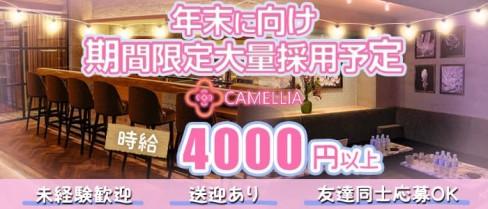 CAMELLIA(カメリア)【公式求人情報】(流川ラウンジ)の求人・体験入店情報