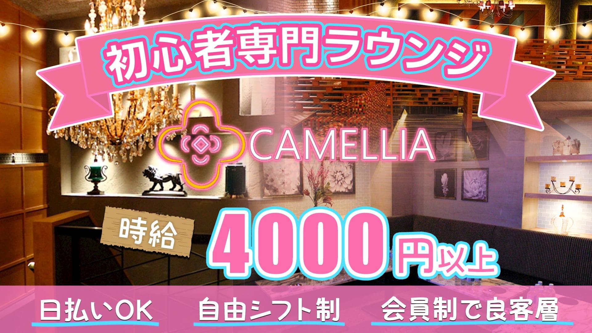 CAMELLIA(カメリア)【公式求人・体入情報】 流川ラウンジ TOP画像