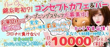 コンセプトCafe&Bar Fairy Toy(フェアリートイ)【公式求人・体入情報】(錦糸町ガールズバー)の求人・バイト・体験入店情報
