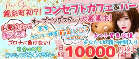 コンセプトCafe&Bar Fairy Toy(フェアリートイ)【公式求人・体入情報】(錦糸町ガールズバー)の求人・体験入店情報