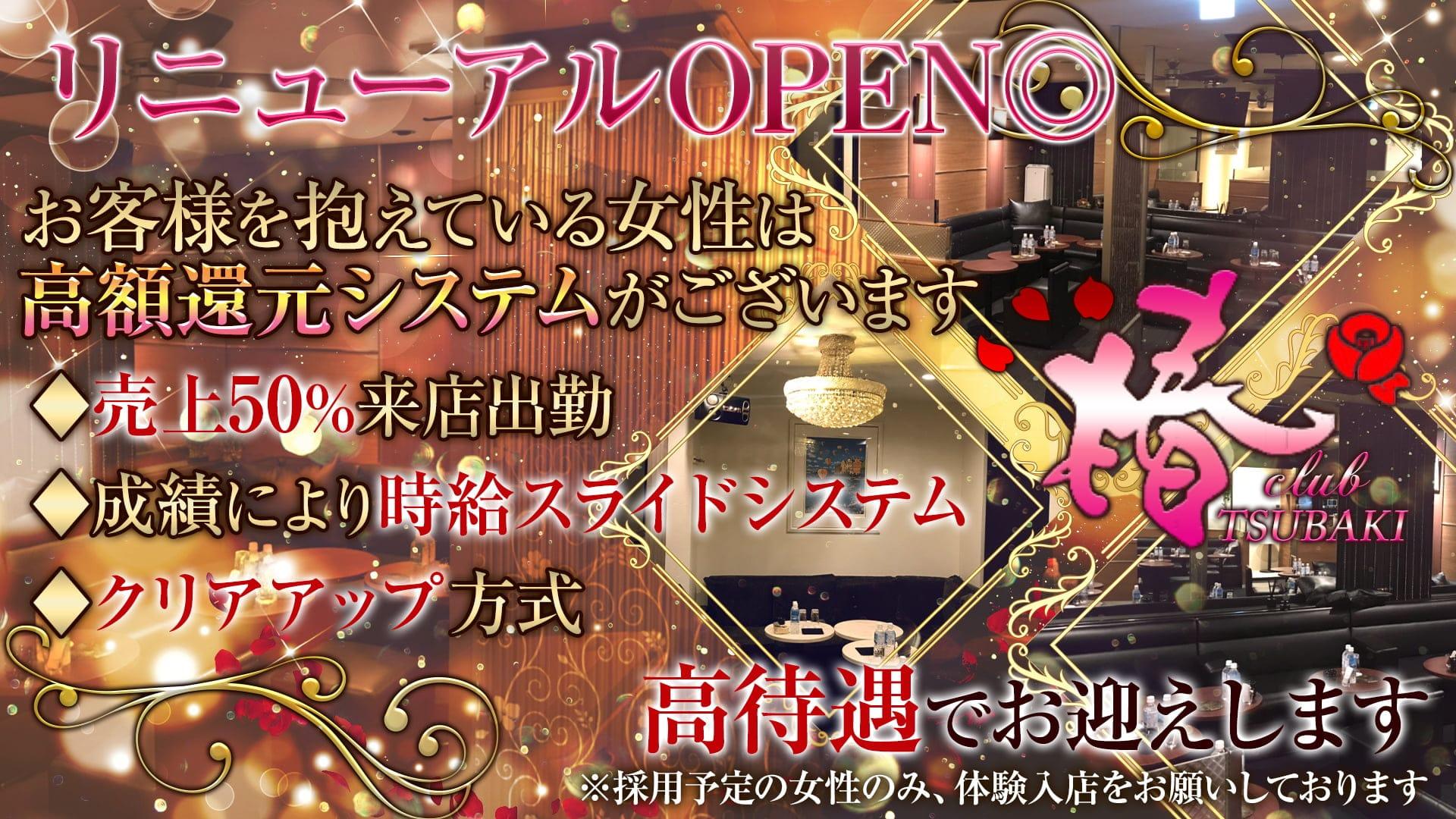 club 椿(クラブ ツバキ)【公式求人・体入情報】 上野ニュークラブ TOP画像