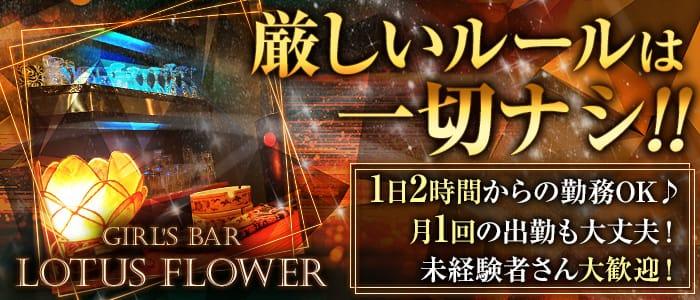 Girl's Bar LOTUS FLOWER(ロータスフラワー)【公式求人・体入情報】 歌舞伎町ガールズバー バナー