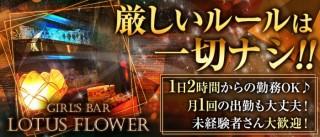 Girl's Bar LOTUS FLOWER(ロータスフラワー)【公式求人情報】(歌舞伎町ガールズバー求人)