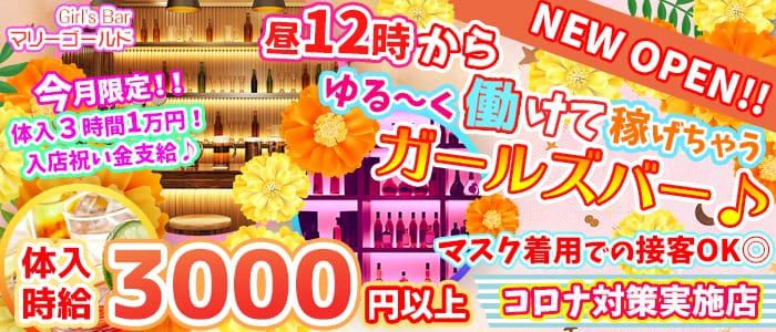 Girl's Bar マリーゴールド【公式求人・体入情報】 錦糸町ガールズバー バナー