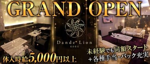 Dande Lion -KOBE-(ダンデライオン)【公式求人情報】(三宮ニュークラブ)の求人・バイト・体験入店情報