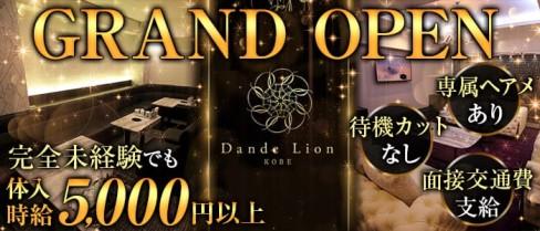 神戸 ダンデライオン(Dande Lion -KOBE-)【公式求人情報】(三宮ニュークラブ)の求人・体験入店情報
