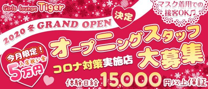 Girls lounge Tiger(ティガー) 関内ガールズバー バナー