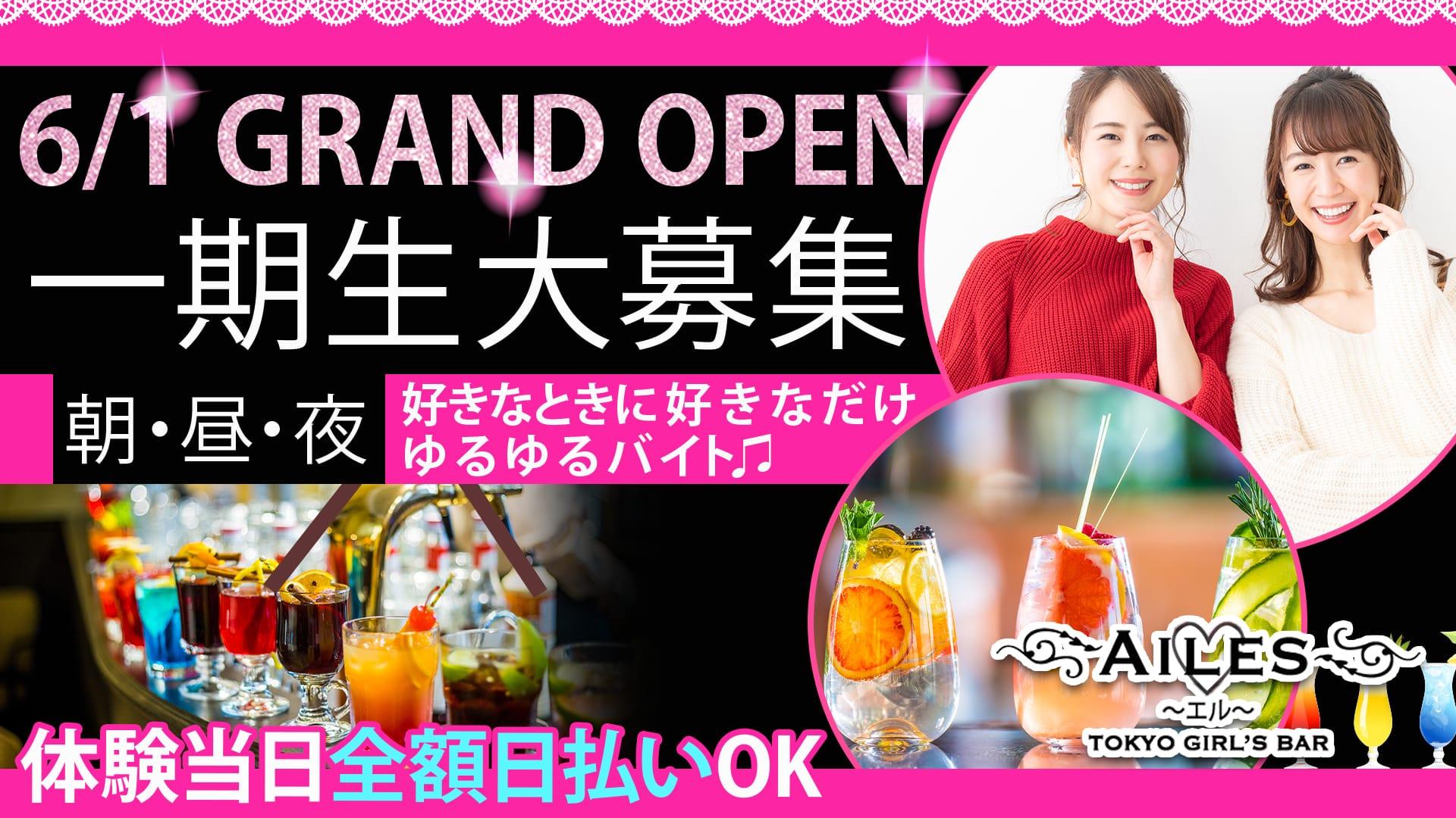 【24時間営業】Girls Bar AILES(ガールズバー エル) 錦糸町ガールズバー TOP画像