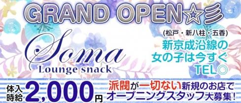 Soma(ソーマ)【公式求人情報】(新八柱ラウンジ)の求人・バイト・体験入店情報