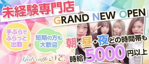 Girls caffe NE.(ニィー)【公式求人情報】(難波ガールズバー)の求人・体験入店情報