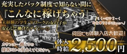 ガーリーカフェ&Bar デイジー【公式求人情報】(明大前ガールズバー)の求人・バイト・体験入店情報