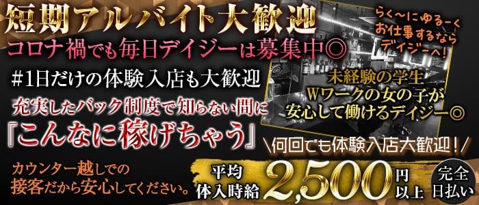 【京王線・井の頭線明大前駅】カフェ&バー  デイジー【公式求人・体入情報】 歌舞伎町ガールズバー バナー
