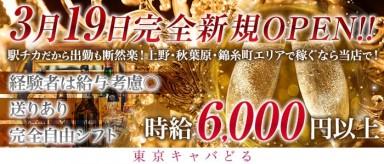 東京キャバどる【公式求人情報】(上野キャバクラ)の求人・バイト・体験入店情報