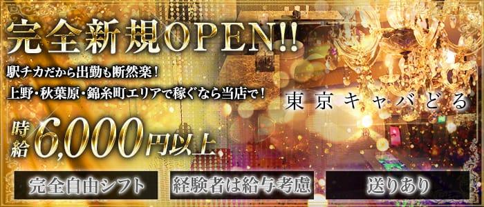 東京キャバどる【公式求人・体入情報】 上野キャバクラ バナー