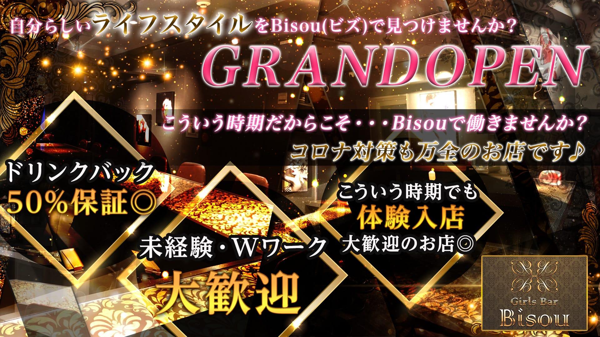 Girls Bar Bisou(ビズ) 神田ガールズバー TOP画像