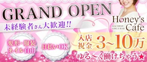 honeys cafe(ハニーズカフェ)【公式求人情報】(八王子ガールズバー)の求人・バイト・体験入店情報