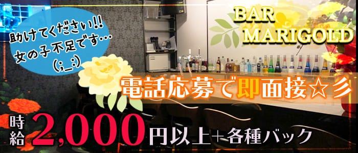 Bar Marigold(マリーゴールド)【公式求人・体入情報】 草津ガールズバー バナー