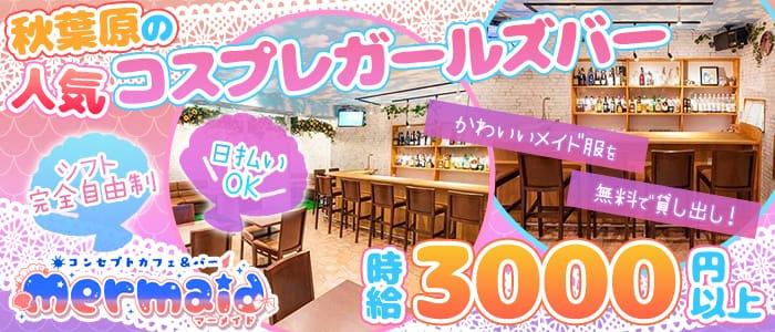 Cafe&Bar Mermaid(マーメイド) 秋葉原ガールズバー バナー