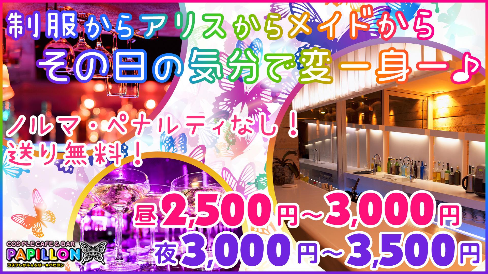 パピヨン 錦糸町 ガールズバー TOP画像