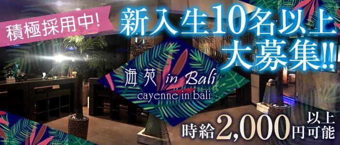 海苑 in Bali<カイエン>(久喜ガールズバー)のバイト求人・体験入店情報