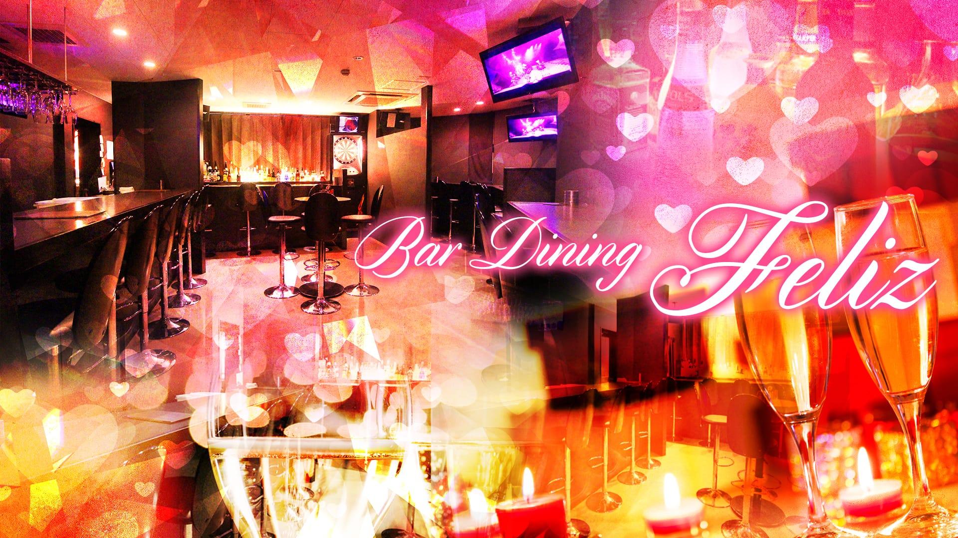 Bar Dining Feliz<フェリス> 神田 ガールズバー TOP画像