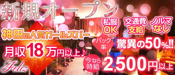 Bar Dining Feliz<フェリス>(神田ガールズバー)のバイト求人・体験入店情報