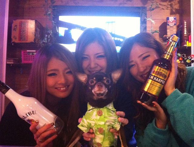 RAVE<レイブ> 上野 ガールズバー SHOP GALLERY 1