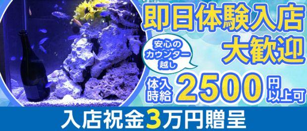 AQUA Girls Bar鶴見店<アクアガールズバー> 川崎 ガールズバー バナー