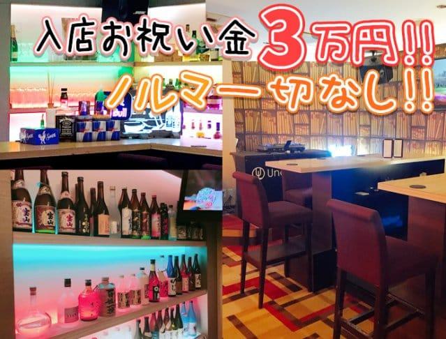 Under Lounge<アンダーラウンジ> 歌舞伎町 ガールズバー SHOP GALLERY 2