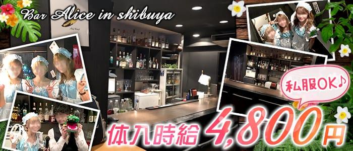 Bar Alice in shibuya<バー アリス イン シブヤ>(渋谷ガールズバー)のバイト求人・体験入店情報