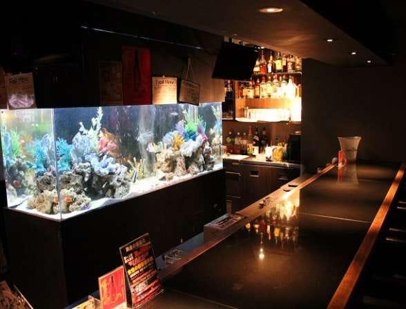 Girl's Bar A's<ガールズバーアズ> 歌舞伎町 ガールズバー SHOP GALLERY 2