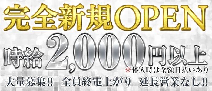 BAR COLORFUL<バーカラフル>(歌舞伎町ガールズバー)のバイト求人・体験入店情報