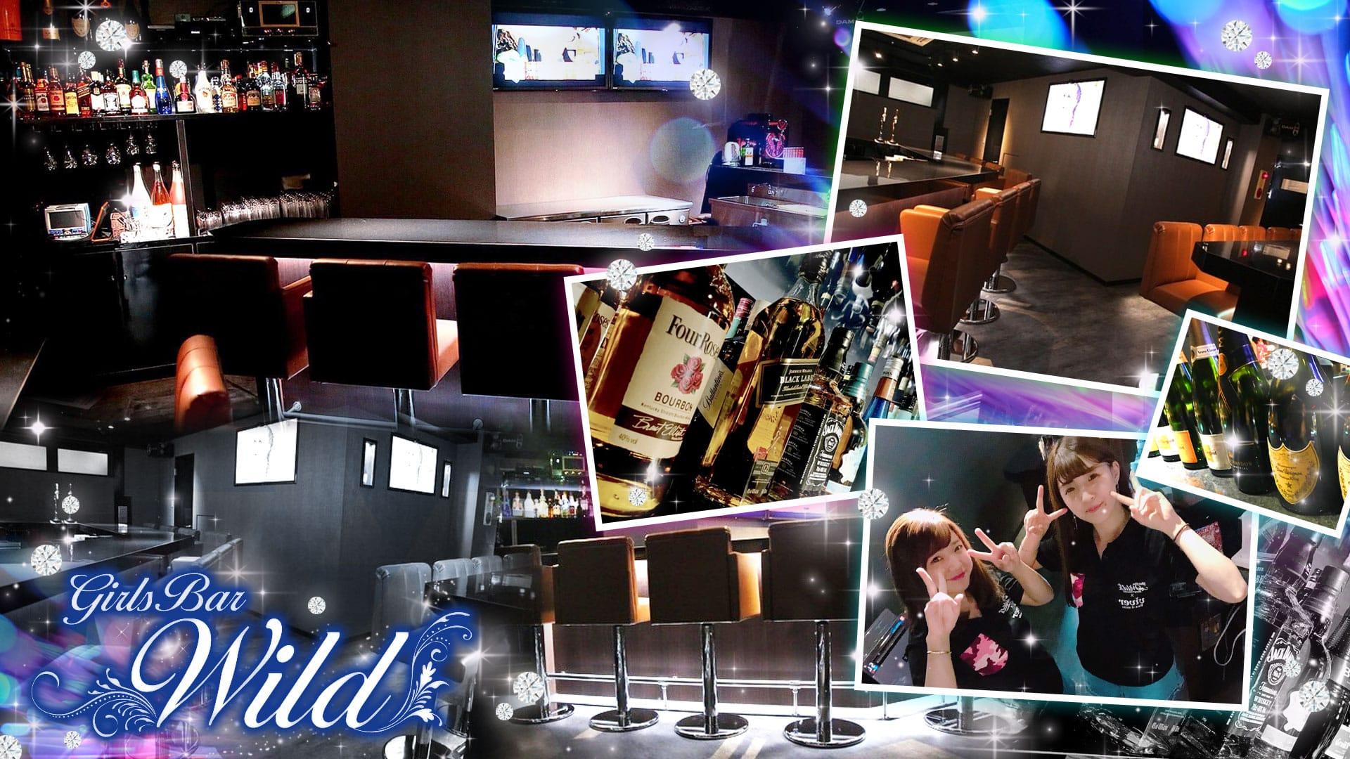 Girl's Bar WILD<ワイルド> 錦糸町 ガールズバー TOP画像