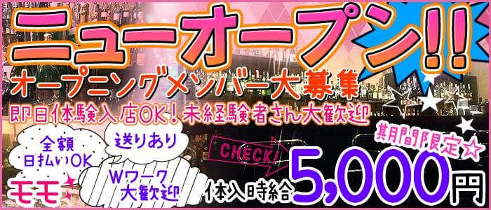モモ(歌舞伎町ガールズバー)のバイト求人・体験入店情報