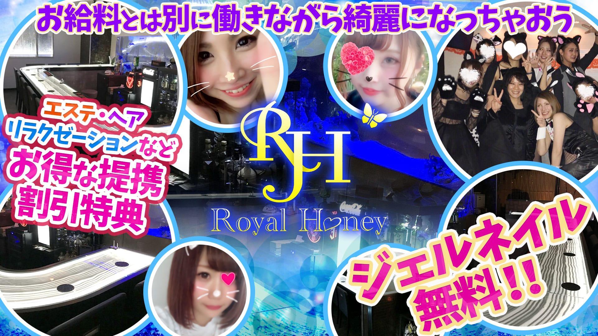ROYAL HONEY<ロイヤルハニー> 五反田 ガールズバー TOP画像