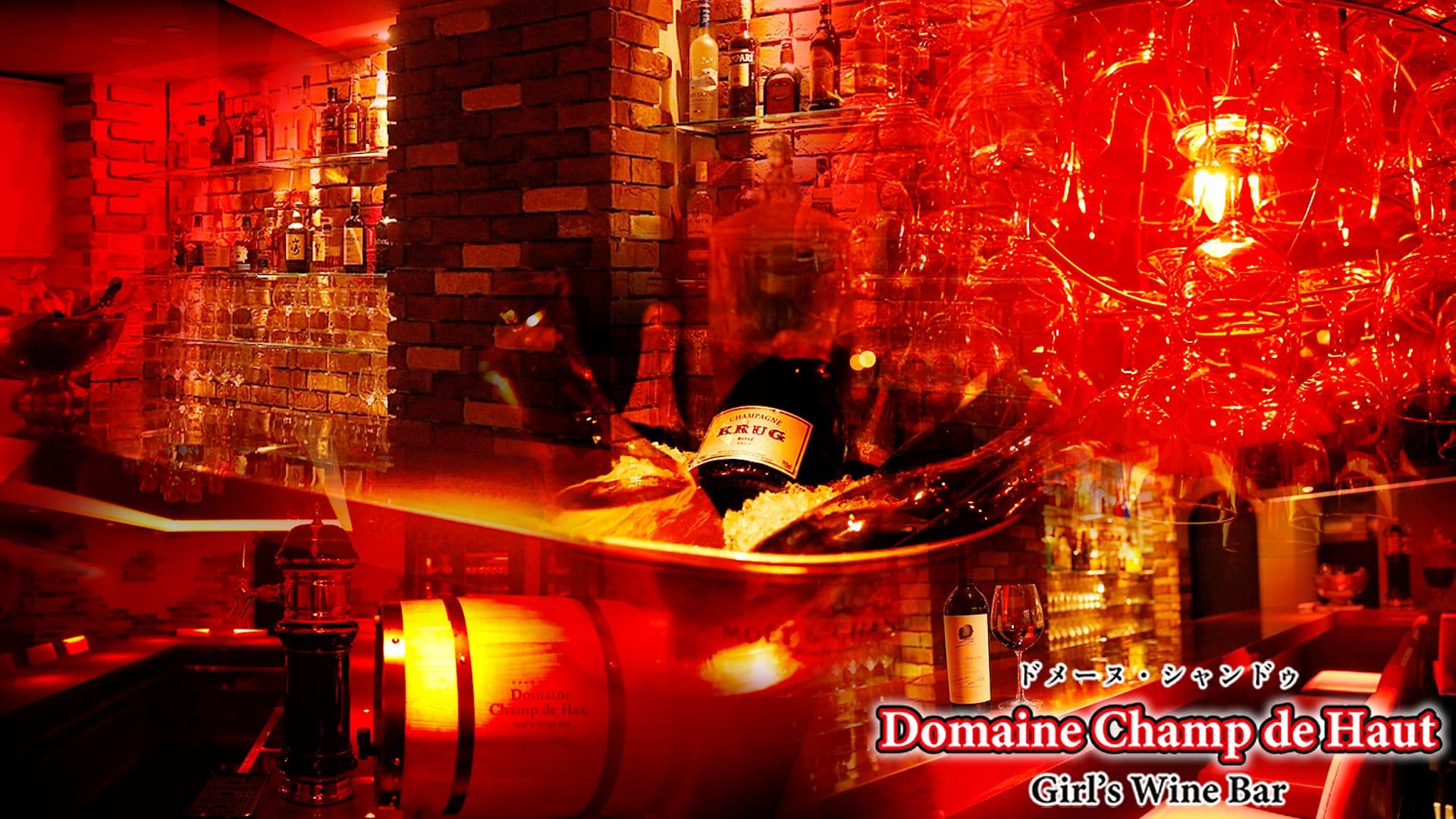 Domaine Champ de Haut<ドメーヌ・シャンドゥ>  上野 ガールズバー TOP画像