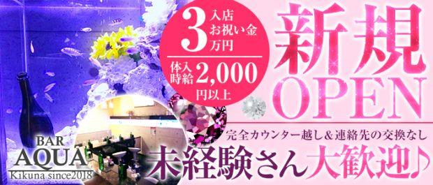 AQUA Girl's Bar菊名店<アクアガールズバー> 菊名 ガールズバー バナー