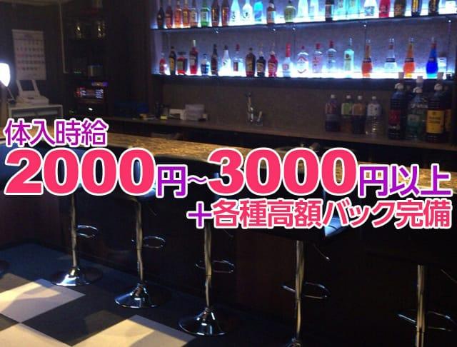Girls Bar Cattleya<カトレア> 亀有 ガールズバー SHOP GALLERY 2