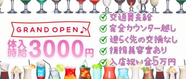 【鶴見】Girls bar Swan<スワン> 関内 ガールズバー バナー