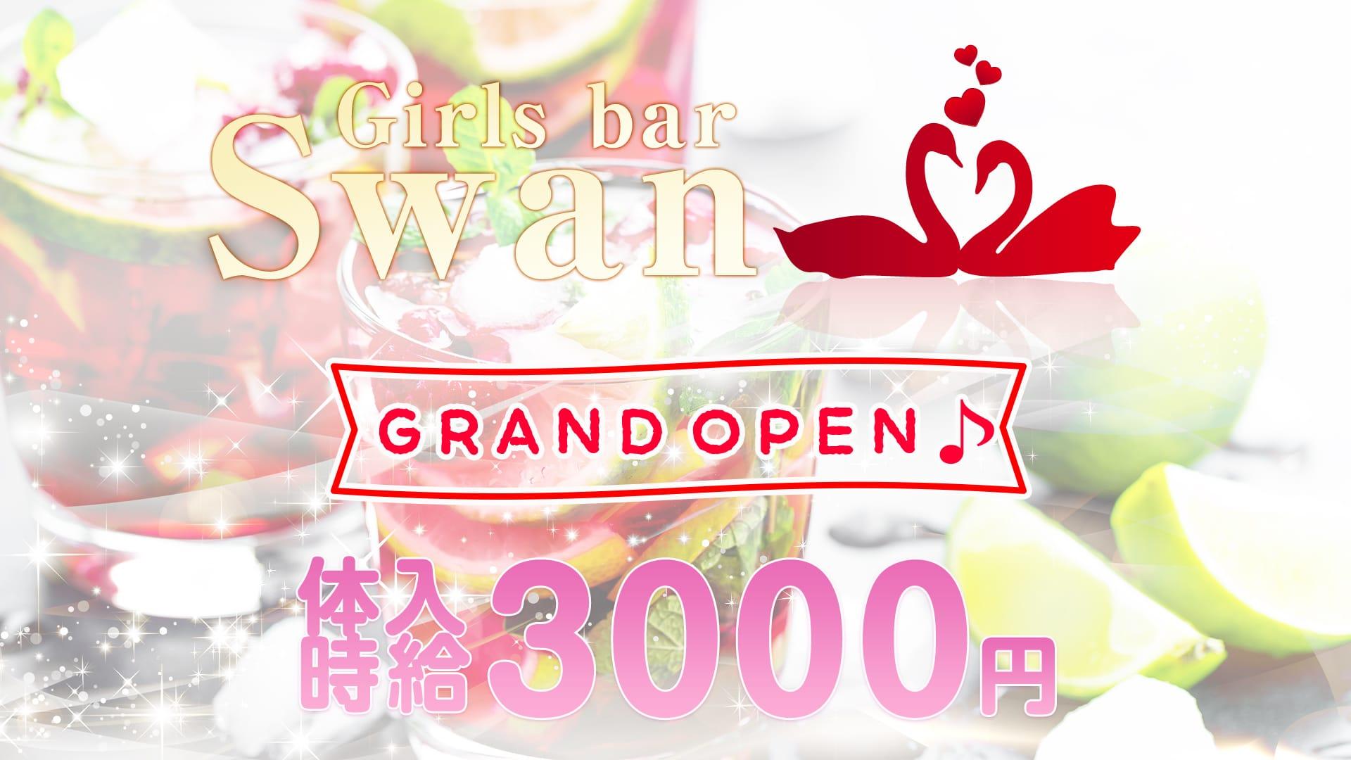 【鶴見】Girls bar Swan<スワン> 関内 ガールズバー TOP画像