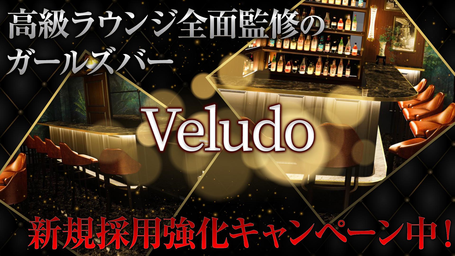 Veludo<ビロード> 恵比寿 ガールズバー TOP画像