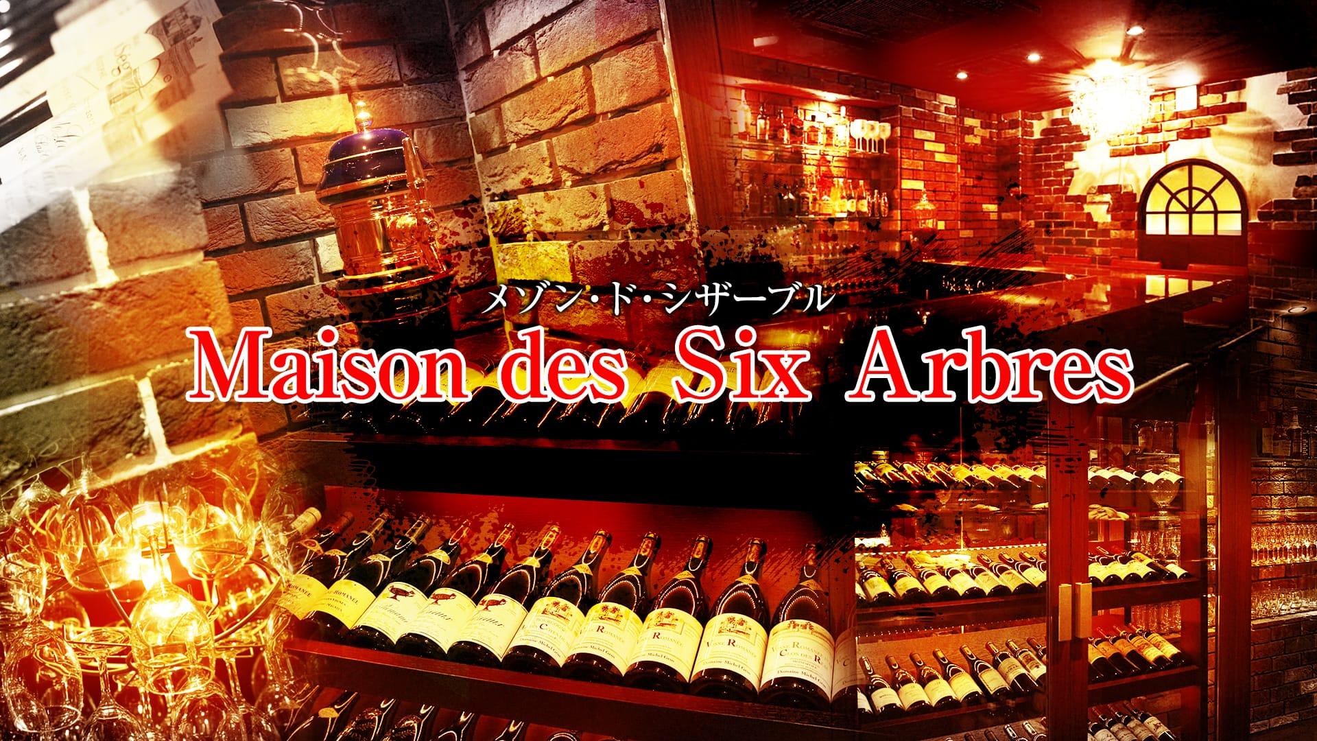 Maison des Six Arbres  <メゾン・ド・シザーブル> 六本木 ガールズバー TOP画像