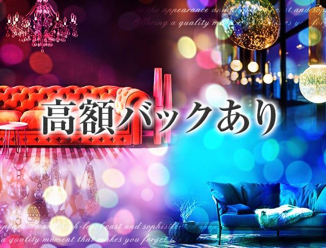 Bar Romance<ロマンス> 六本木 ガールズバー SHOP GALLERY 3