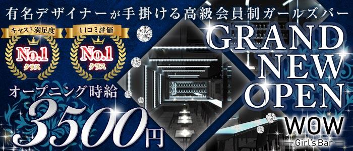 Girl's Bar WOW<ワオ>(錦糸町ガールズバー)のバイト求人・体験入店情報